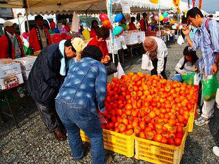 柿の詰め放題